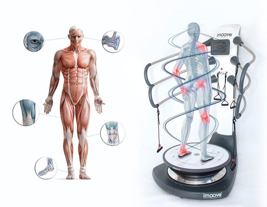 Imoove - Physiologie de l'équilibre